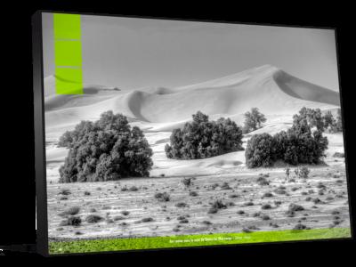 Décoration bureau photo Maroc